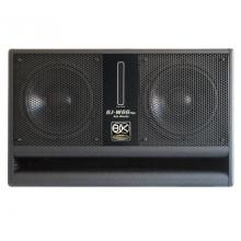 Loa sub hơi kép BIK BJ-W66PLUS, Bass 25cm x2, Dùng Karaoke, Nghe nhạc ( Giá: 1 chiếc)